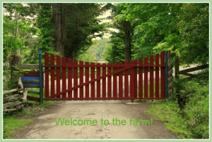 Red gate at farm entrance